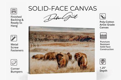 canvas info sales sheet