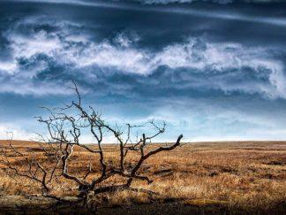 flint hills photography best kansas photographer debra gail