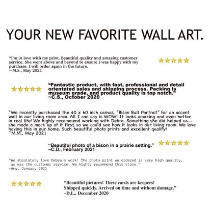 texas longhorn wall art debra gail