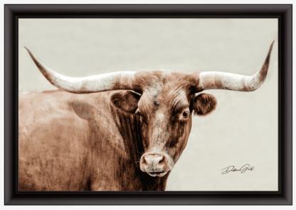 black frame longhorn wall art 10408 debra gail photography