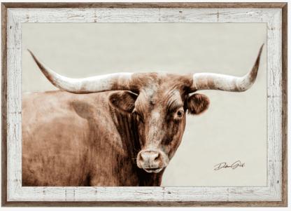 Two-tone barnwod frame longhorn wall art 10408 debra gail photography