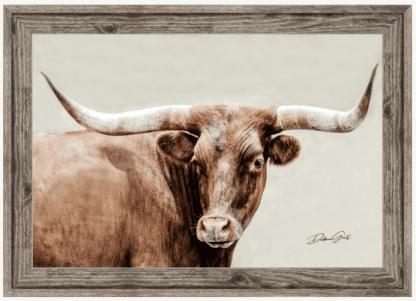 barnwood frame longhorn wall art 10408 debra gail photography