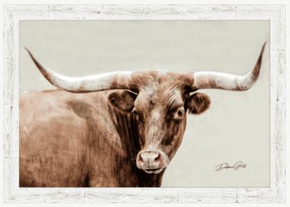 white barnwood frame longhorn wall art 10408 debra gail photography